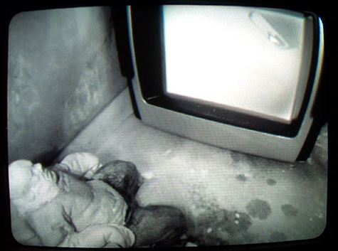 whitescreenpanopticon - fantezi makinesinde hakikat sızıntısı